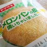 なんだコレ?ヤマザキ「メロンパンの皮焼いちゃいました。」買ってみた