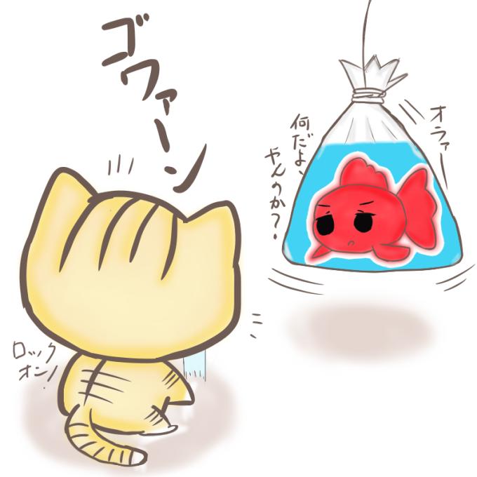 金魚VS子猫