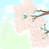 今年の春も、やっぱり桜のフリーイラストでしょ?