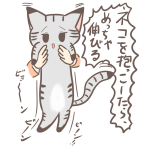 猫を持ち上げたら…メッチャ伸びる