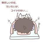 夜に寝苦しいのは、だいたいが、コイツのせい….。