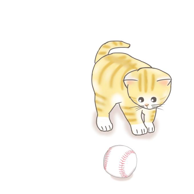 野球ボールで遊びたい猫のイラスト