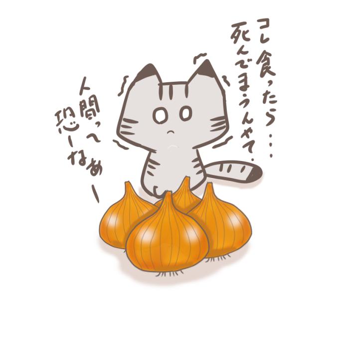 玉ねぎと猫