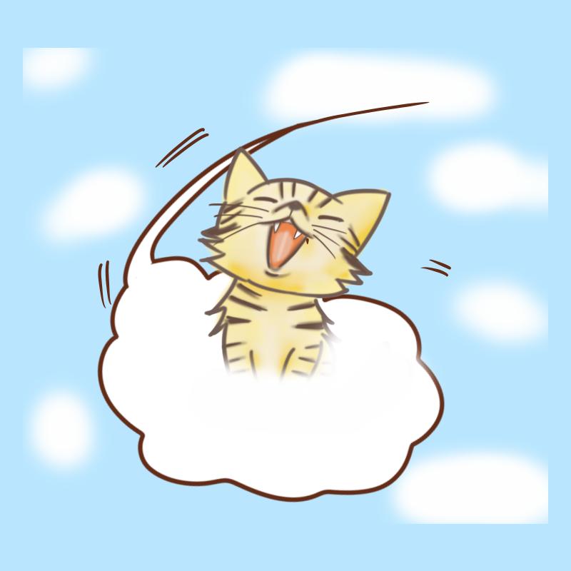 雲に乗って空を飛ぶ猫