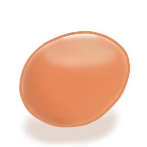 生卵・ゆで卵