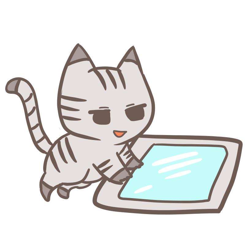 タブレットを使う猫(笑み)