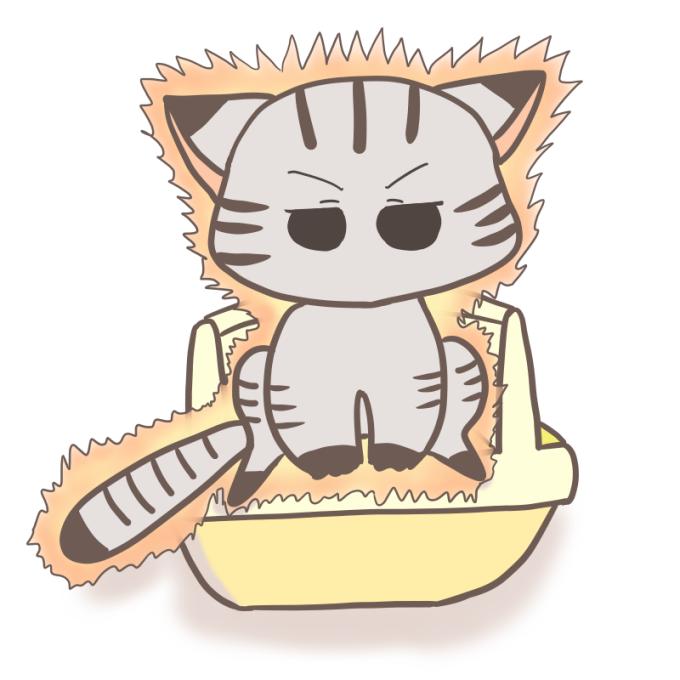 真剣にトイレをする猫(気合マックス)