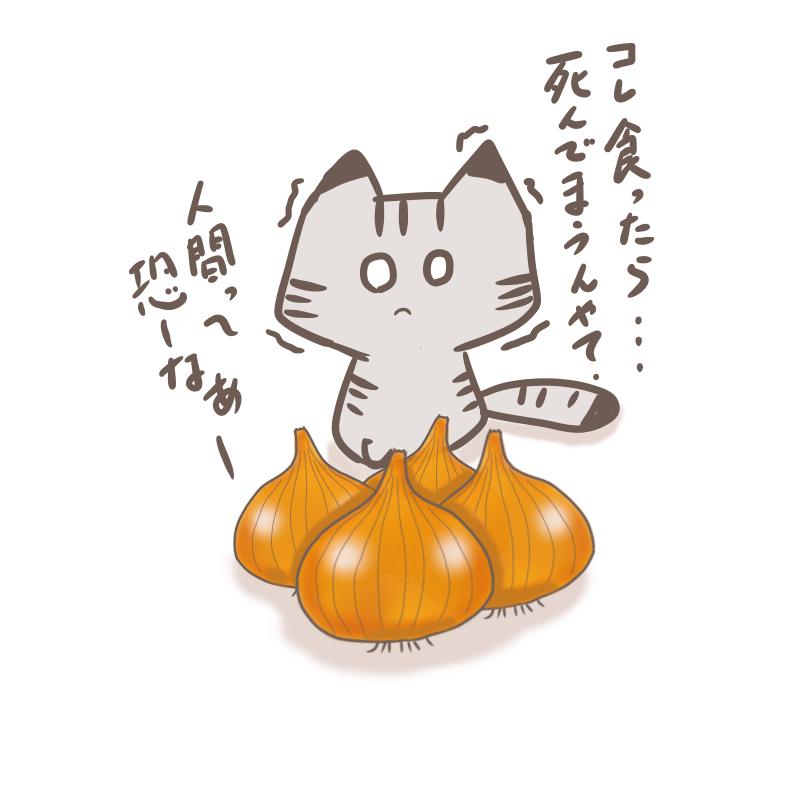 玉ねぎと猫(文字無し)